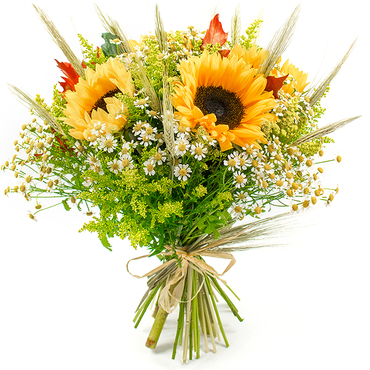 Buy Fresh Flower Arrangements