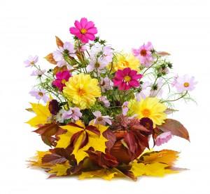 Seasonal Flowers Delivery in London