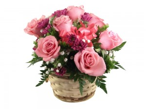 Send Apology Flowers in UK